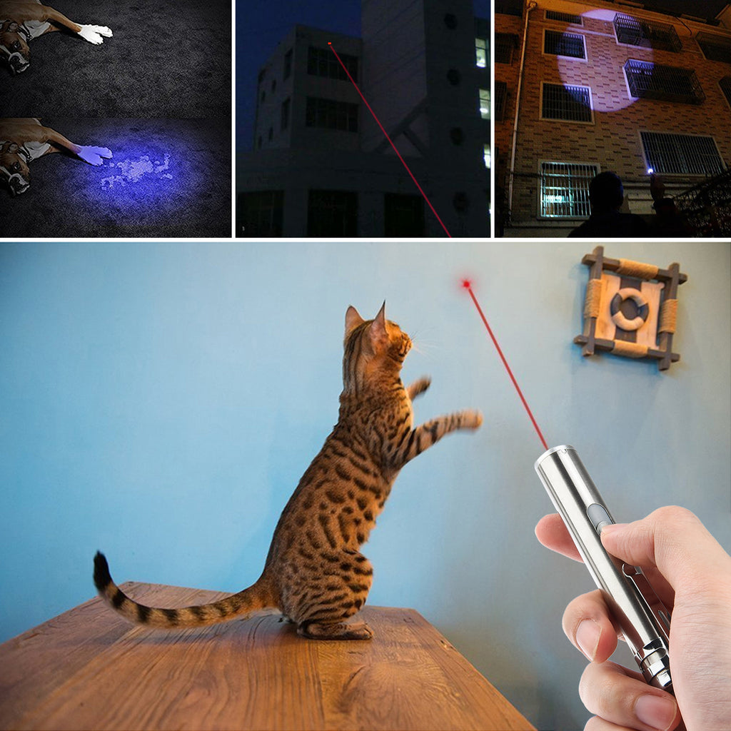 3-in-1 Rechargeable Cat Catch Pointer Toy Pet Training Tool