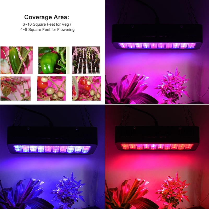 50*6W Full Spectrum Black LED Grow Lights