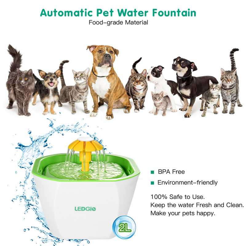 2L Pet Cat Dog Water Drinking Water Fountains