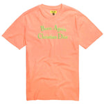 Chinatown Market Born Again Tee (Salmon)