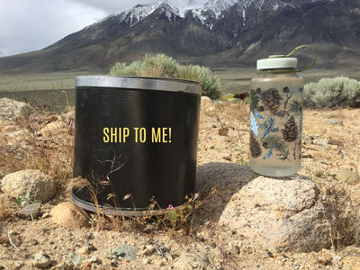 Scout Bearikade Canister Rental: Ship to Me