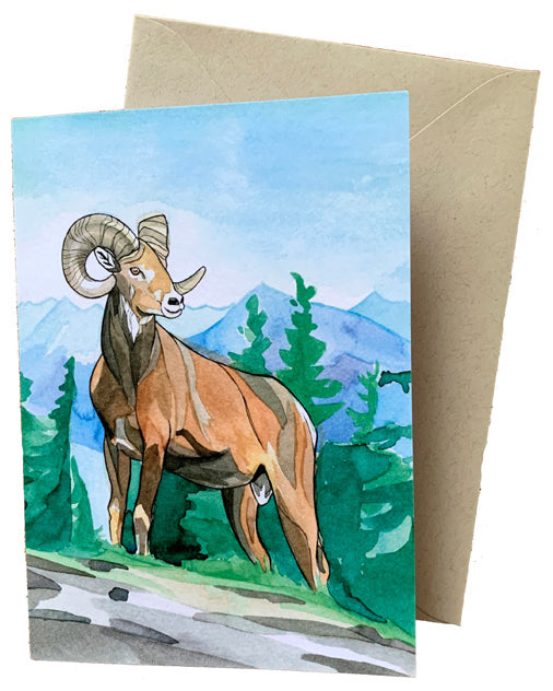 Alex Bailey Bighorn Sheep Greeting Cards