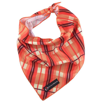 Oui Oui Frenchie Bandanas Oui Oui Frenchie Bandana - Fall Plaid