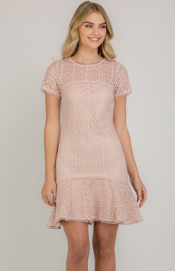 Darling Lace Dress In Blush