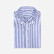 Delft Blue Fine Stripe Cotton Customized Dress Shirt