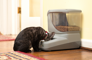 PortionPro Automatic Cat Feeder to Prevent and Reverse Obesity
