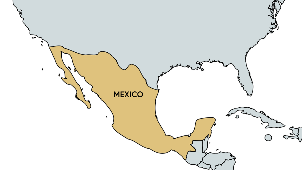 Risk Snapshot - Mexico