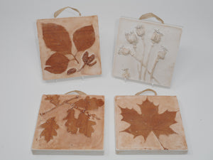 Botanical Art in Plaster - Square