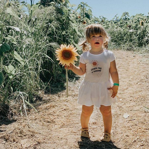 Toddler girl standing in a sunflower patch, holding a sunflower and wearing a white dress printed with a sun and the words single ray of sunshine