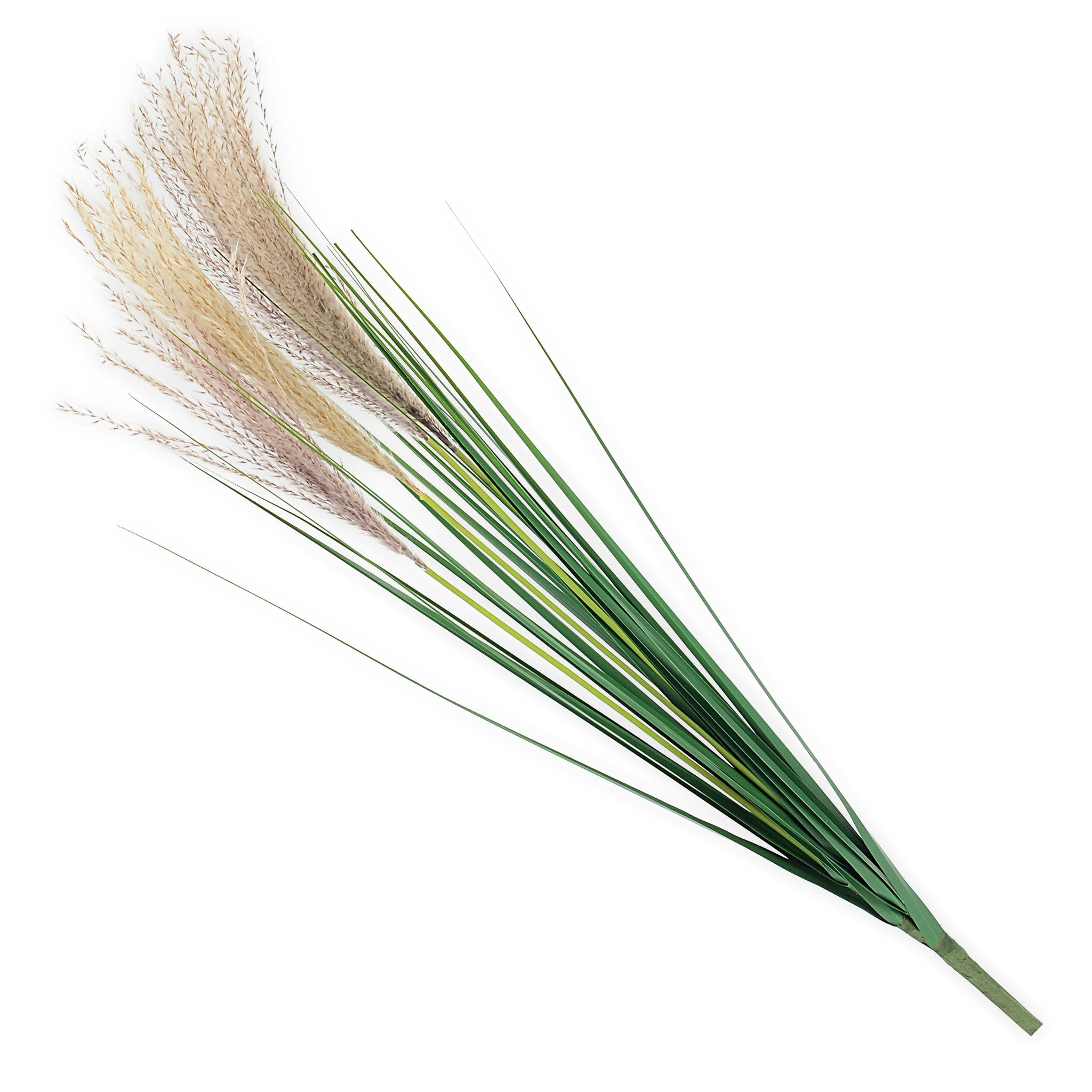 REED Planta artificiala