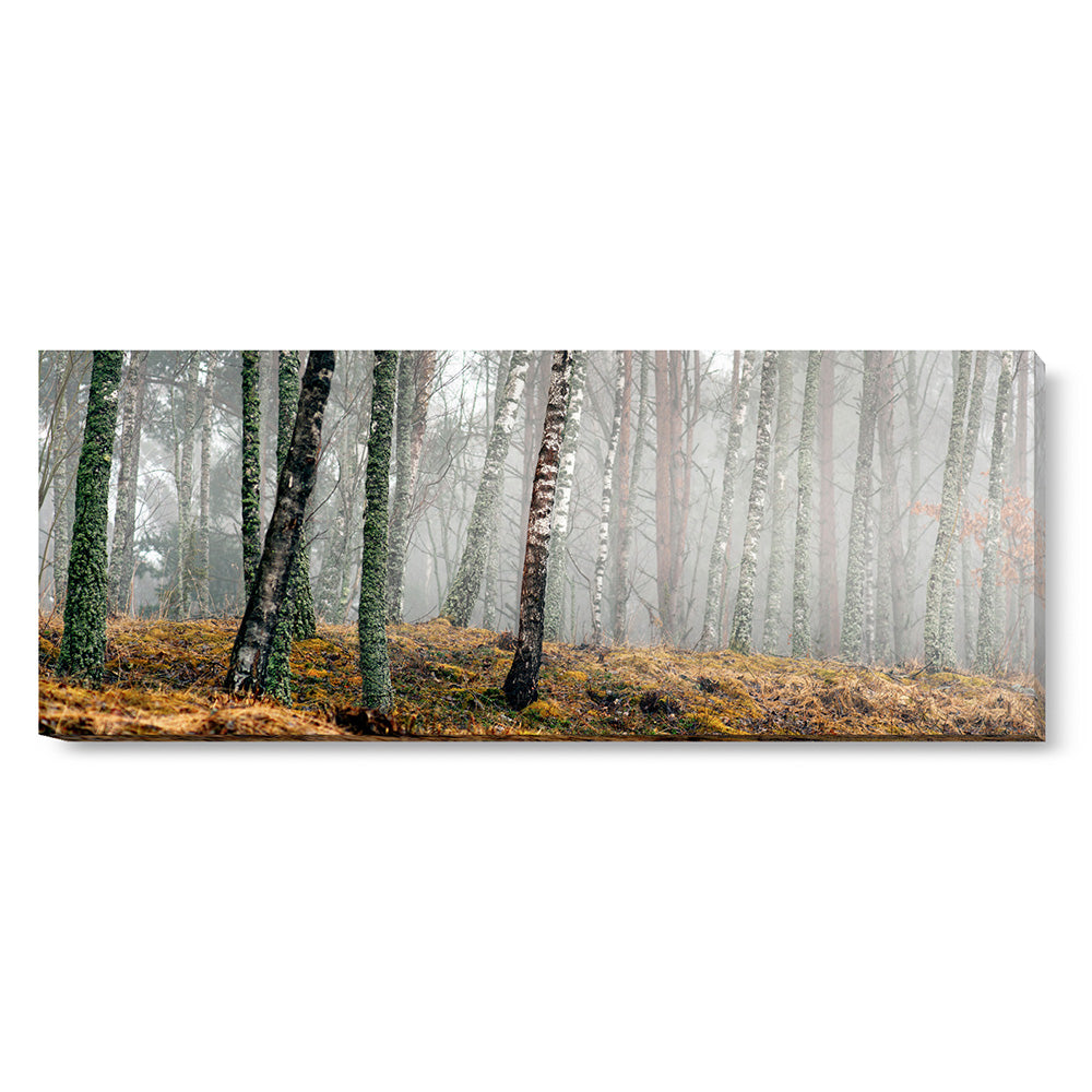 Tablou canvas 50x130 cm AUTUMN SHADES