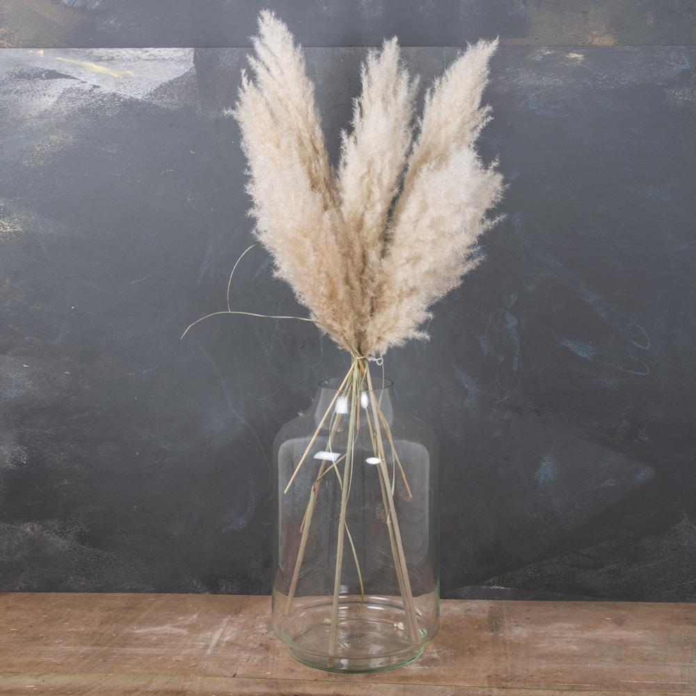 Natural Fluffy Decoration Pampas Grass (10 Pieces)