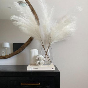Smooth Natural Wheat White Pampas Grass For Home Decor (10 Pieces)