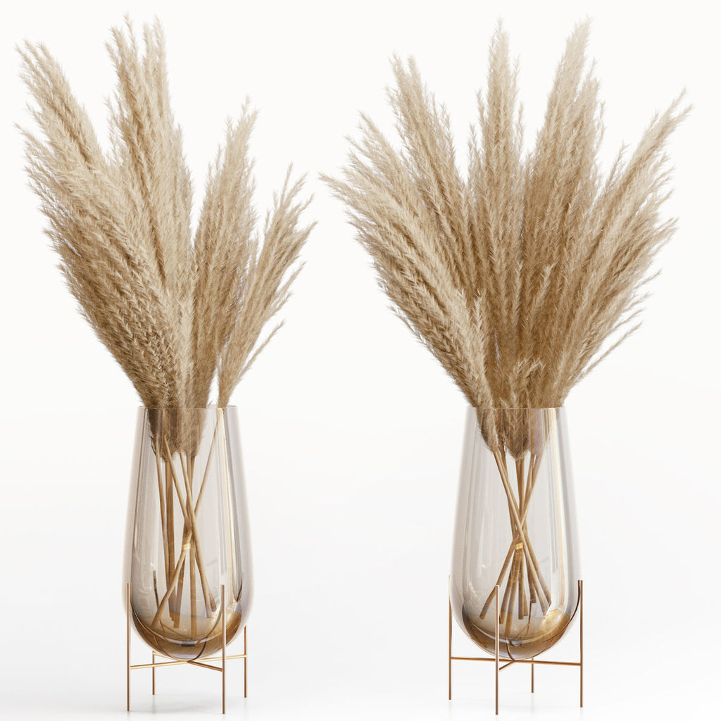 Decoration Phragmites Pampas Grass Large Real Natural Dried Plants
