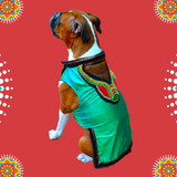 blue green bohemian dog kurta
