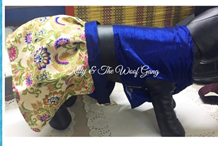 blue choli and multicolored lehenga dog choli