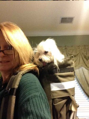 Dog carrier backpack for small dog