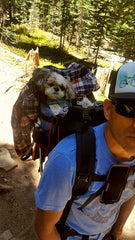 Dog Backpack Carrier for Hiking