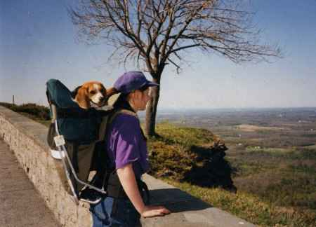 MONTANA DOG PERCH BACKPACK (SMALL)