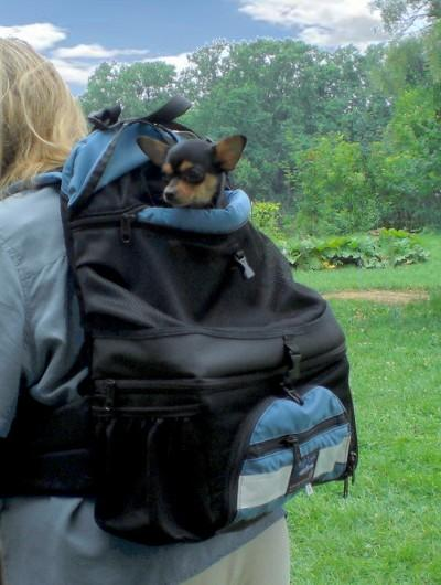 DOUBLE-DECKER Mini Dog Backpack