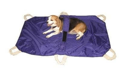 DOG STRETCHER for large dogs