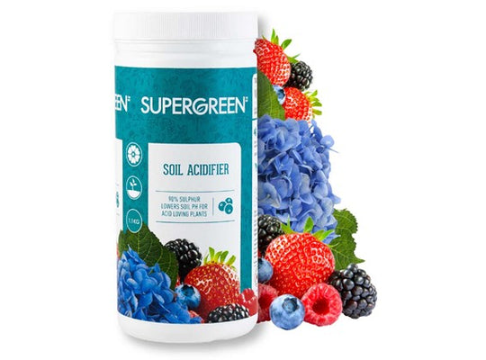 Supergreen - Acidifiant de sol 1.1kg