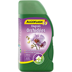 Algoflash - Orchidées 250ml