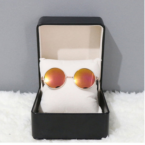 5173ee8b9e15d Stylish Circle Lens Sunglasses – Paws   Play Co.
