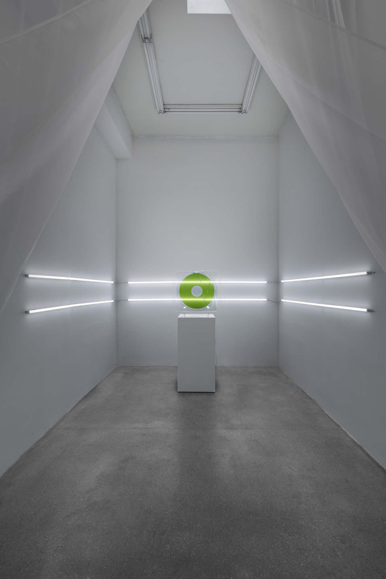 Arden Surdam Donut Tank, 2019 Algae, acrylic, tubing, glass, LEDs 24 × 24 × 1 inches || 61 × 61 × 2.5 centimeters