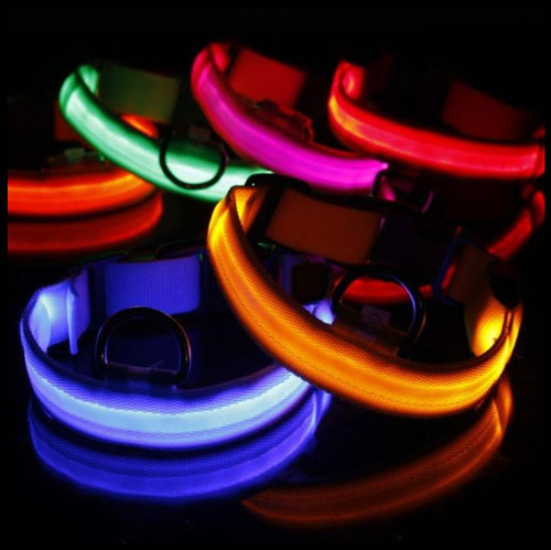 LED Glow In The Dark Cat Collar - Accessories - JBCoolCats