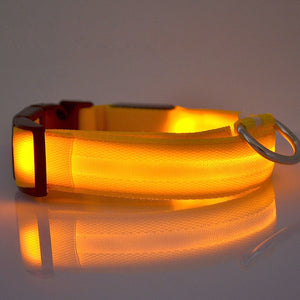 LED Glow In The Dark Cat Collar - Yellow Glow - JBCoolCats