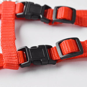 Nylon Cat Harness and Leash -  - Buckles - JBCoolStuff