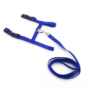 Nylon Cat Harness and Leash - Blue - JBCoolStuff