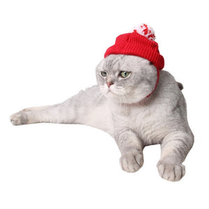 Red Christmas Cat Hat - Christmas - JBCoolCats