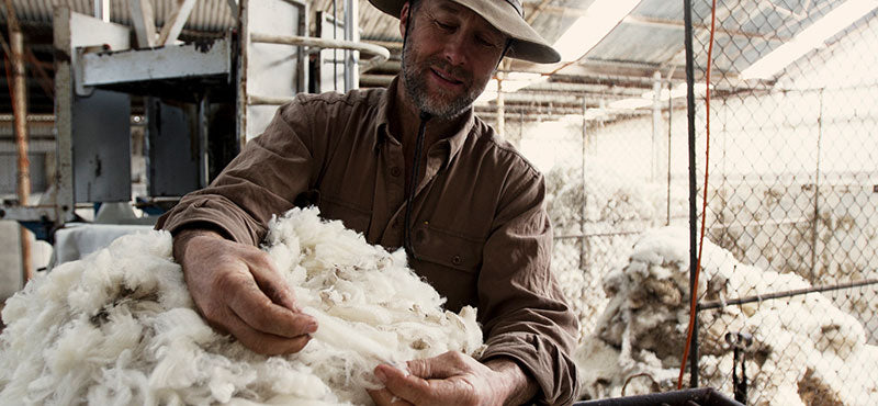 Dayle Lloyd examining a Merino wool fleece at Eden Valley Farm