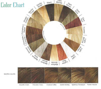 Kenya Wig by Envy Color Chart