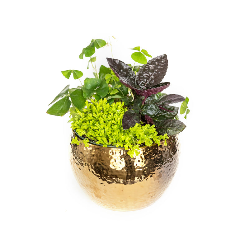 Pot of Gold Planter