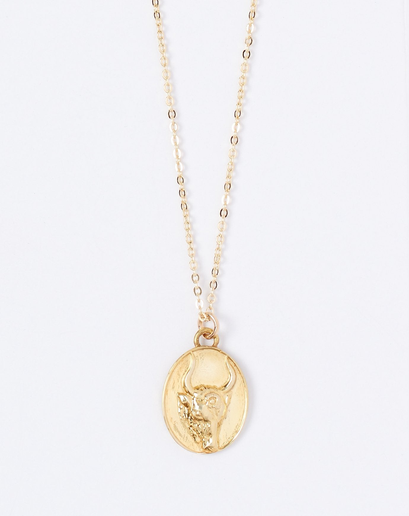 Talon Zodiac Pendant Necklace - Taurus