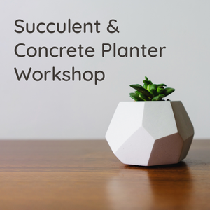 Succulent Inc. - Succulent and Concrete Planter Workshop @CityPlace - Toronto Date Ideas - Plant Night - hosted by JOMO Studio