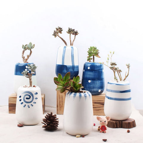Succulent Inc. - Hand Painted Porcelain Succulent Planter Set of 6 - Free Shipping and Taxes Included