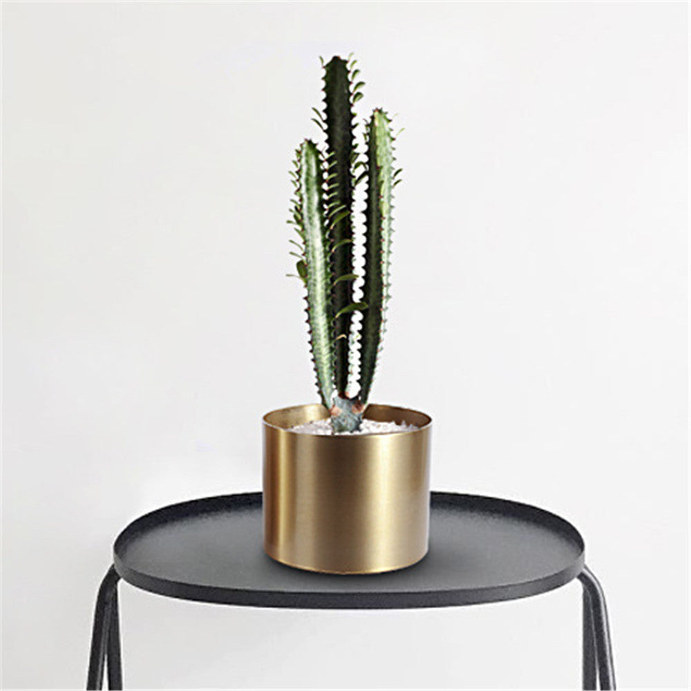 Succulent Inc. - Modern Cylinder Metal Succulent Planter - Free Shipping and taxes included