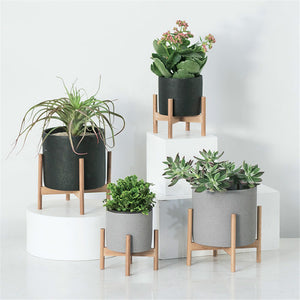 Succulent Inc. - Mid Century Modern Concrete Planter with Wood Stand - Free Shipping and Taxes Included