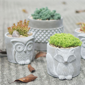 Succulent Inc. - Fox & Owl Concrete Planter Silicone Molds - Free Shipping and Taxes Included