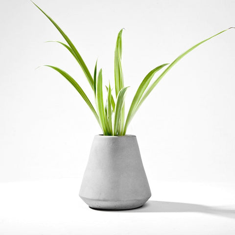 Succulent Inc. - Vase Style Concrete Planter Silicone Mold - Free Shipping and Taxes Included