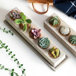 Succulent Inc. - Rectangular Tray Planter Silicone Mold - Free Shipping and taxes included