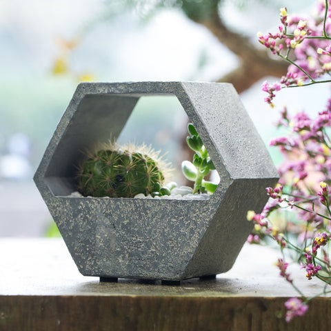 Succulent Inc. - Hexagon Resin Succulent Planter - Free Shipping and taxes included