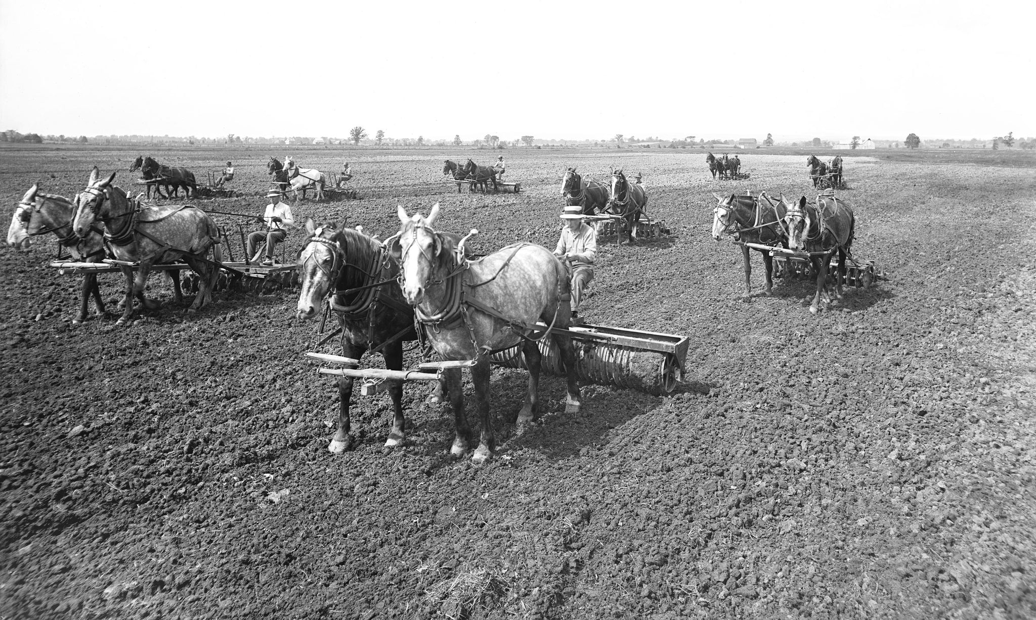 Teams working the fields at Heart's Delight Farm, circa 1915. -- Courtesy Miner Institute