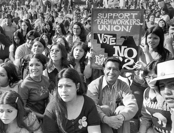 Students at Fresno State listen to Cesar Chavez speak on November 3, 1972. -- Courtesy The Fresno Bee