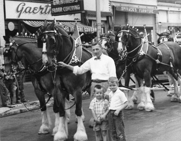 Jim Friedl, Phil Friedl, and Joe Cowin with Clydesdales for Waterloo's Centennial Celebration, 1954. -- Courtesy Mary Friedl Nadeau