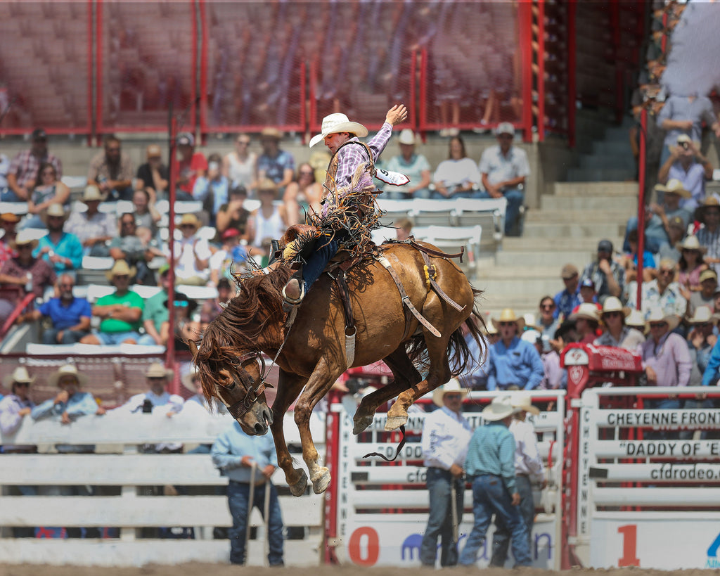 The cover image, courtesy of Wyoming Tribune Eagle, shows Tegan Smith of Winterset, Iowa, competing in saddle bronc riding during the 125th anniversary Cheyenne Frontier Days Rodeo, July 25, 2021, at Frontier Park Arena in Cheyenne. Smith received a score of 86.5 for the ride.